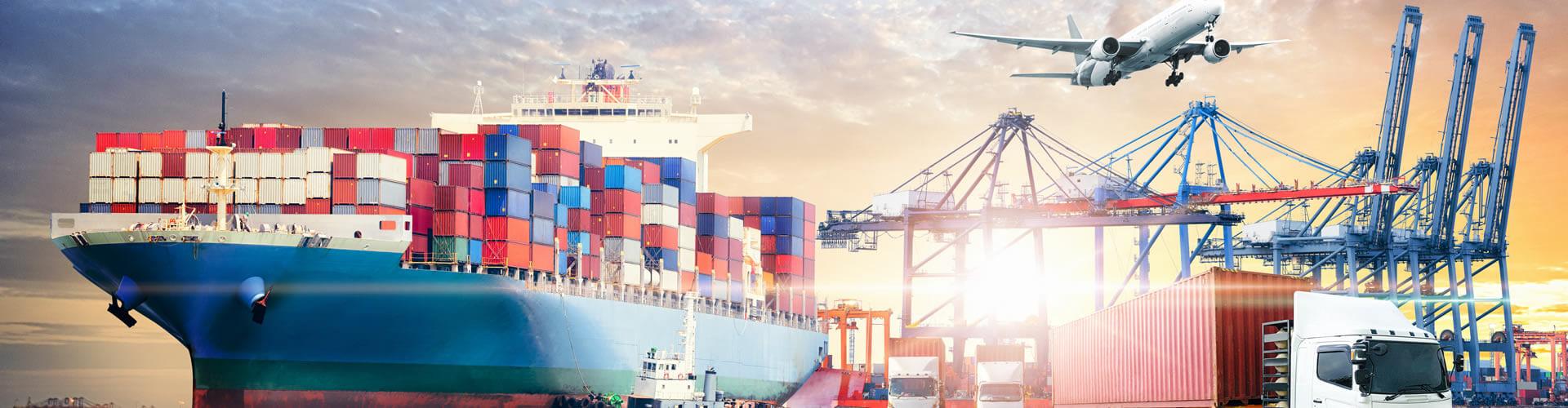 Empresa de Logística, Exportação